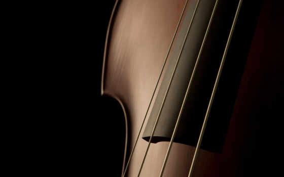 виолончель, more, скрипка