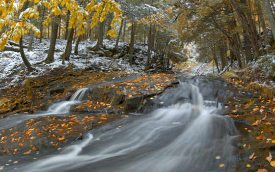 осень, поздняя, природа, new, мб, images, iphone,