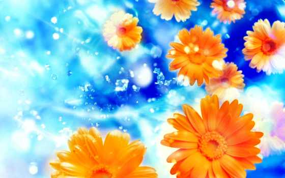 фоны, часть, photoshop, фотошопа, весенние, метки, сказочные, цветочные, красивые,