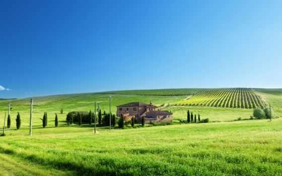 house, поле, столбы, трава, trees, дорога, виноградники, небо, пастбища, зелёный, зелёная,
