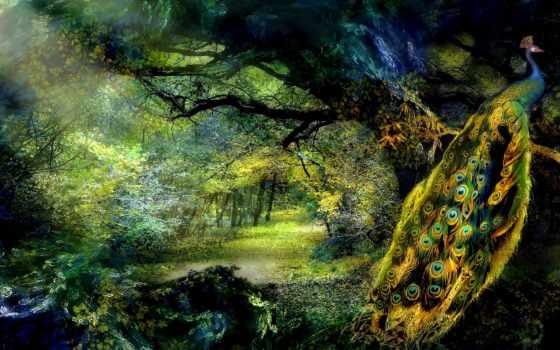peacock, trees, сказочный, лес, zhivotnye,
