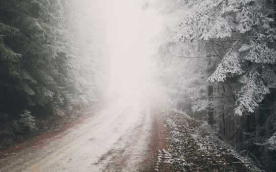 снег, winter, природа, хвойный, лес