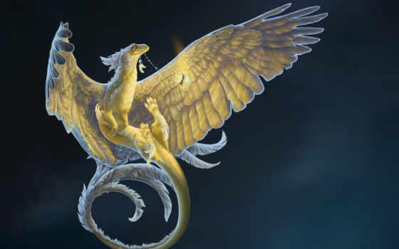 дракон, white, изображение