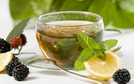 чая, чая, cup, зелёный, зеленого, than, just, делает, more,
