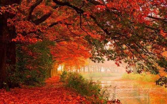 природа, hdr, красивые