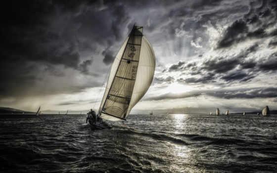 sail, природа