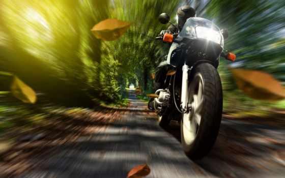 шлем, мотоциклист, скорость, мотоцикл, мотоциклы, картинка, природа, осень, листва,