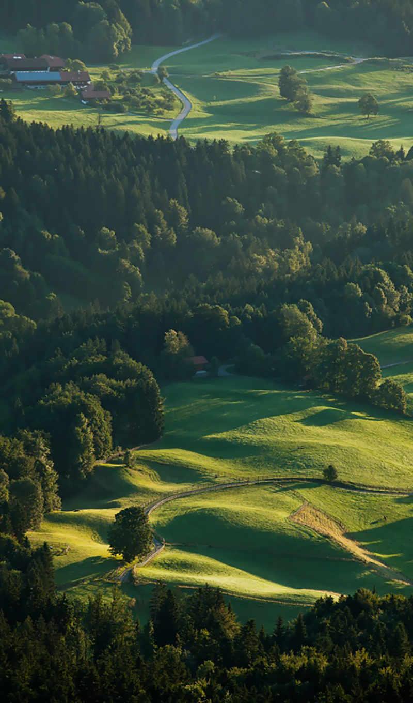 ,, зеленый, природа, пастбище, нагорье, поле, аэрофотосъемка, пейзаж, сельский район, d