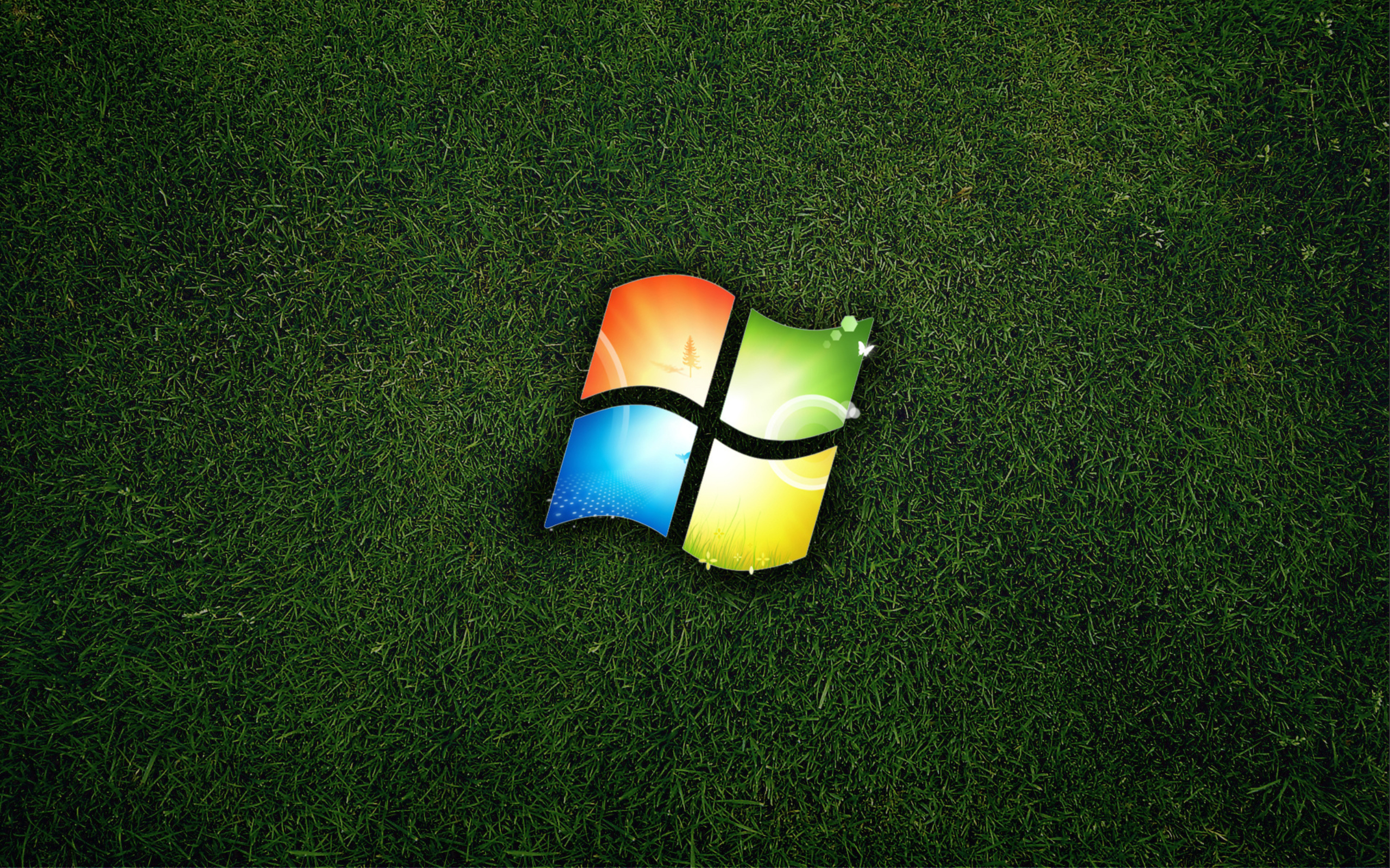Обои grass, windows. Windows foto 15