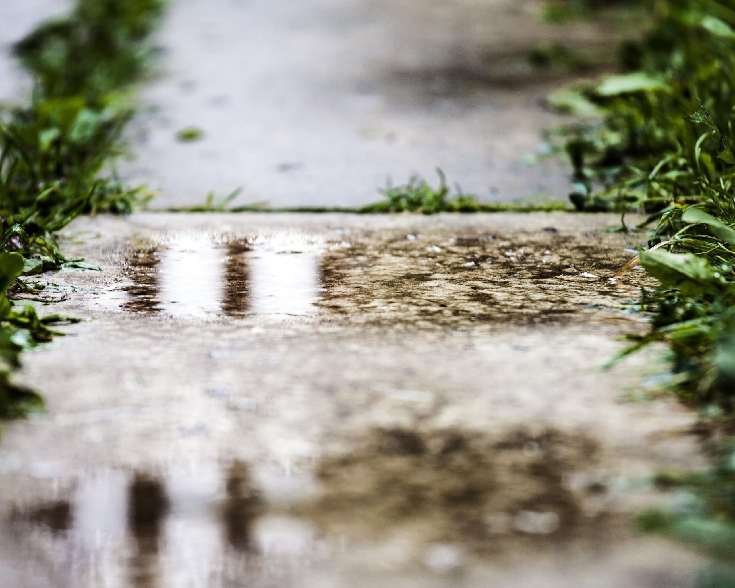 Обои лужа, дождь, мостовая. Города foto 9