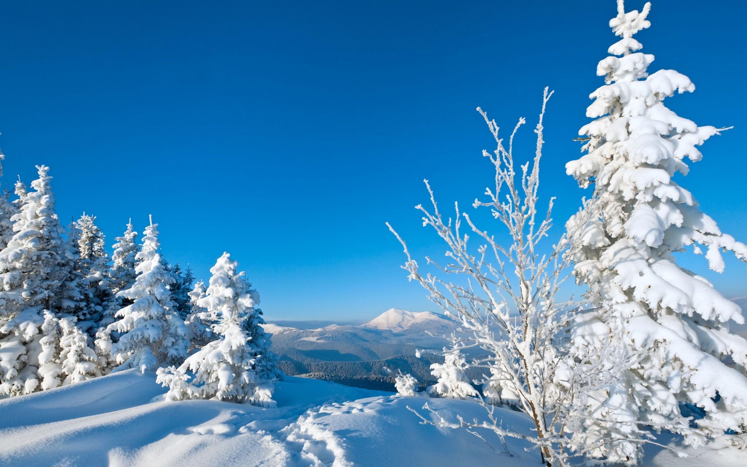Картинки зимы на рабочий стол красивые большие на весь экран