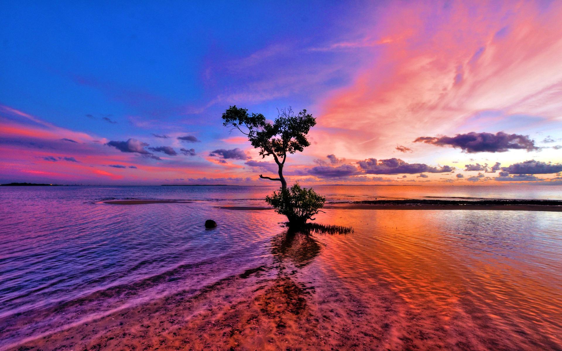 Море вода деревья облака  № 1034927 бесплатно
