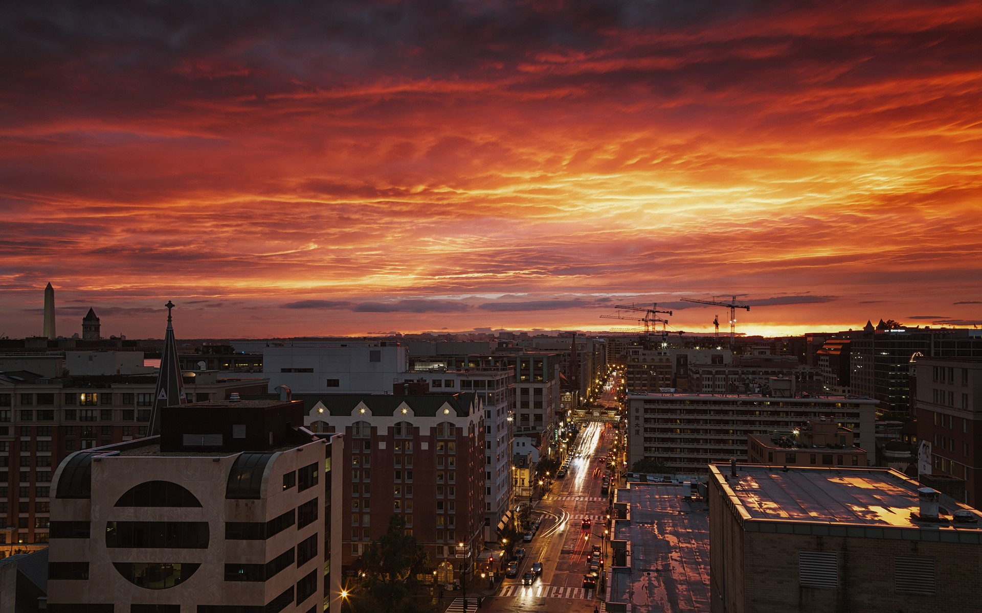 картинки города на закате дня собаки