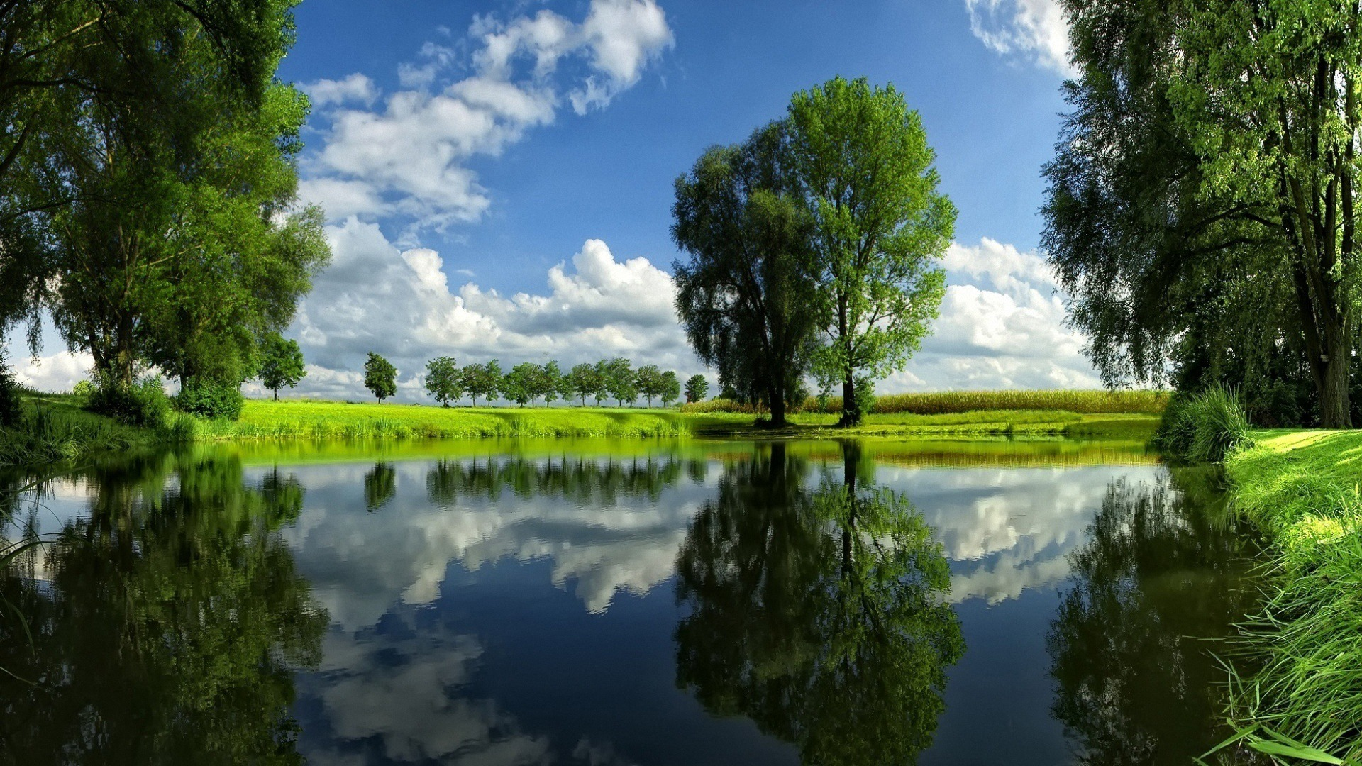 Видео картинки природа речка