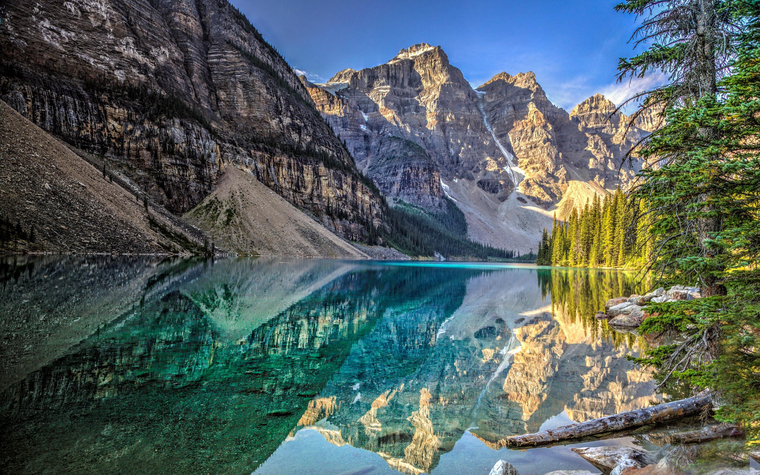 Bow Lake and Flowers, Banff National Park, Alberta, Canada  № 230886 бесплатно