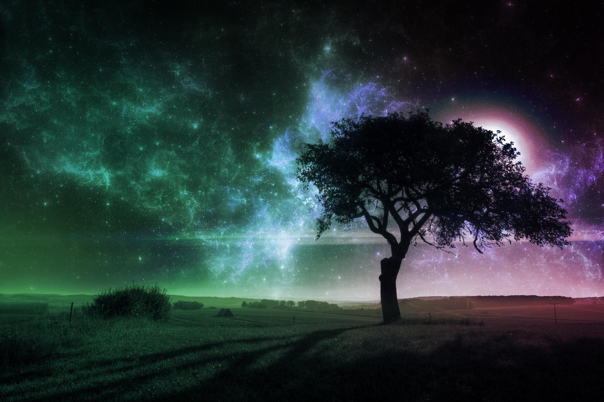 Вселенная Дерево  № 753445 загрузить