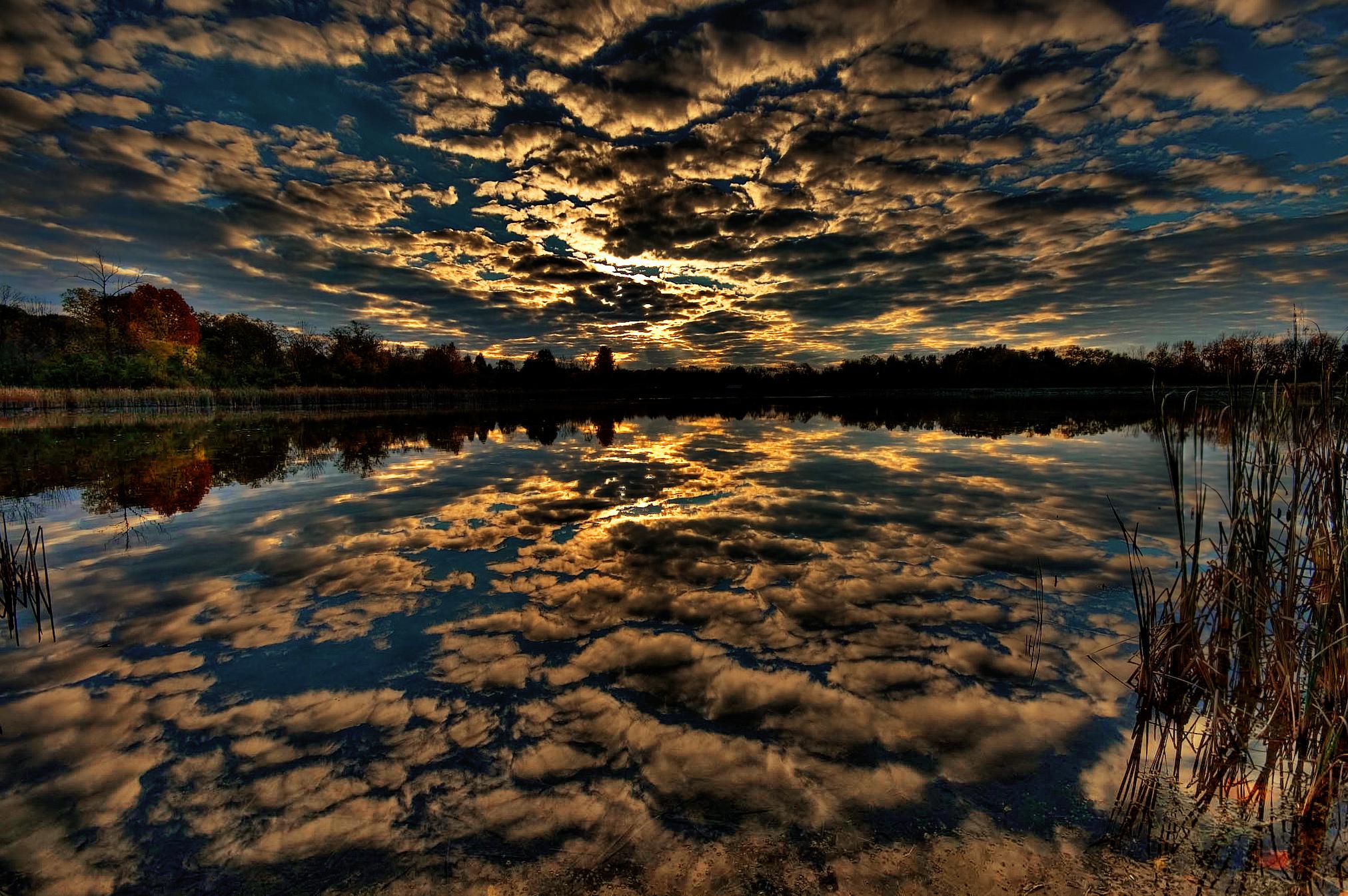 Закат за лесом над водой скачать