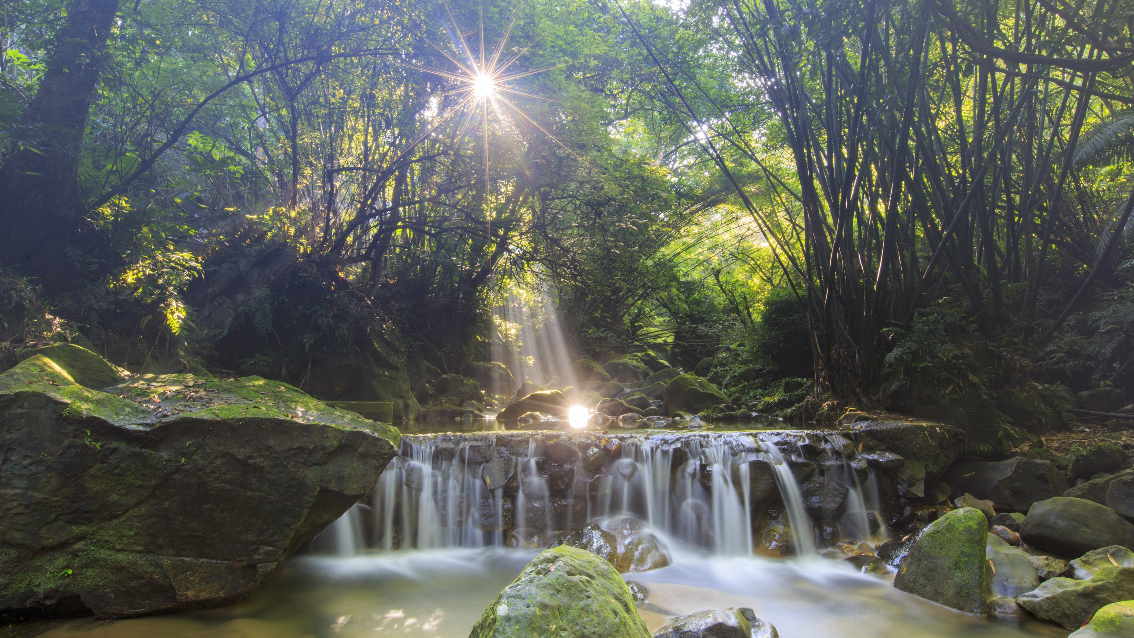 природа водопад трава загрузить