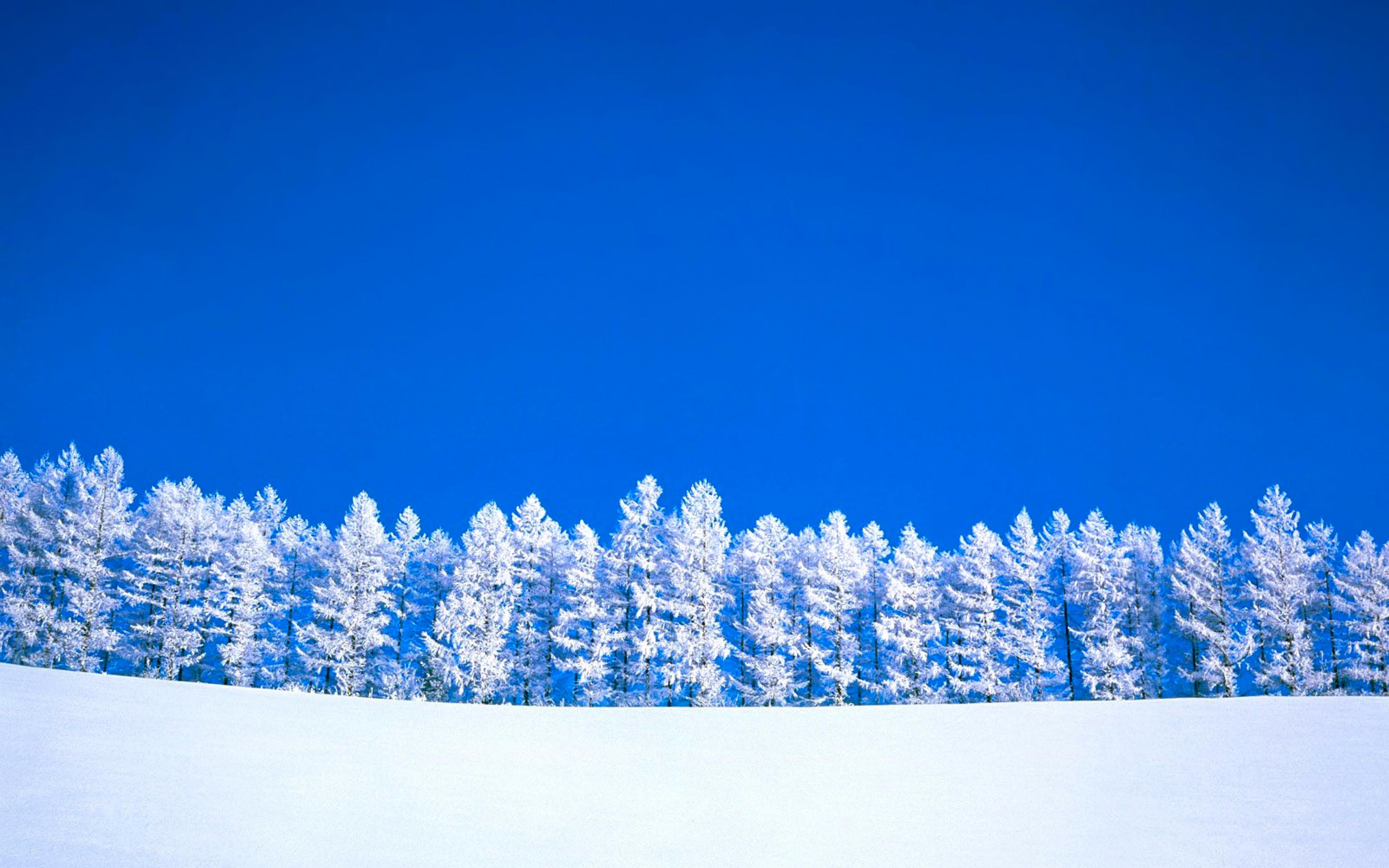 безоблачное небо зимой  № 2469705 бесплатно
