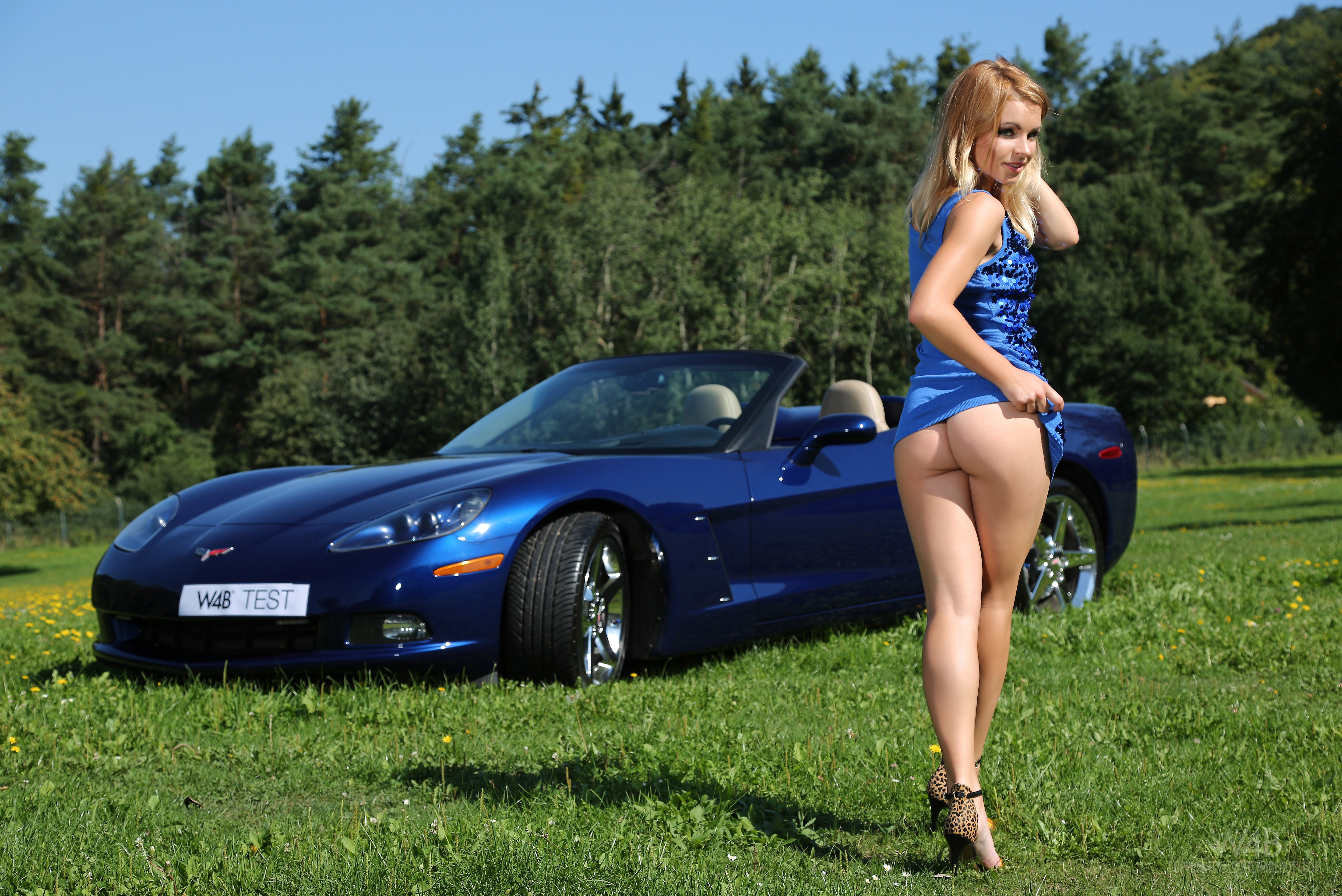 nudes-with-corvettes-images