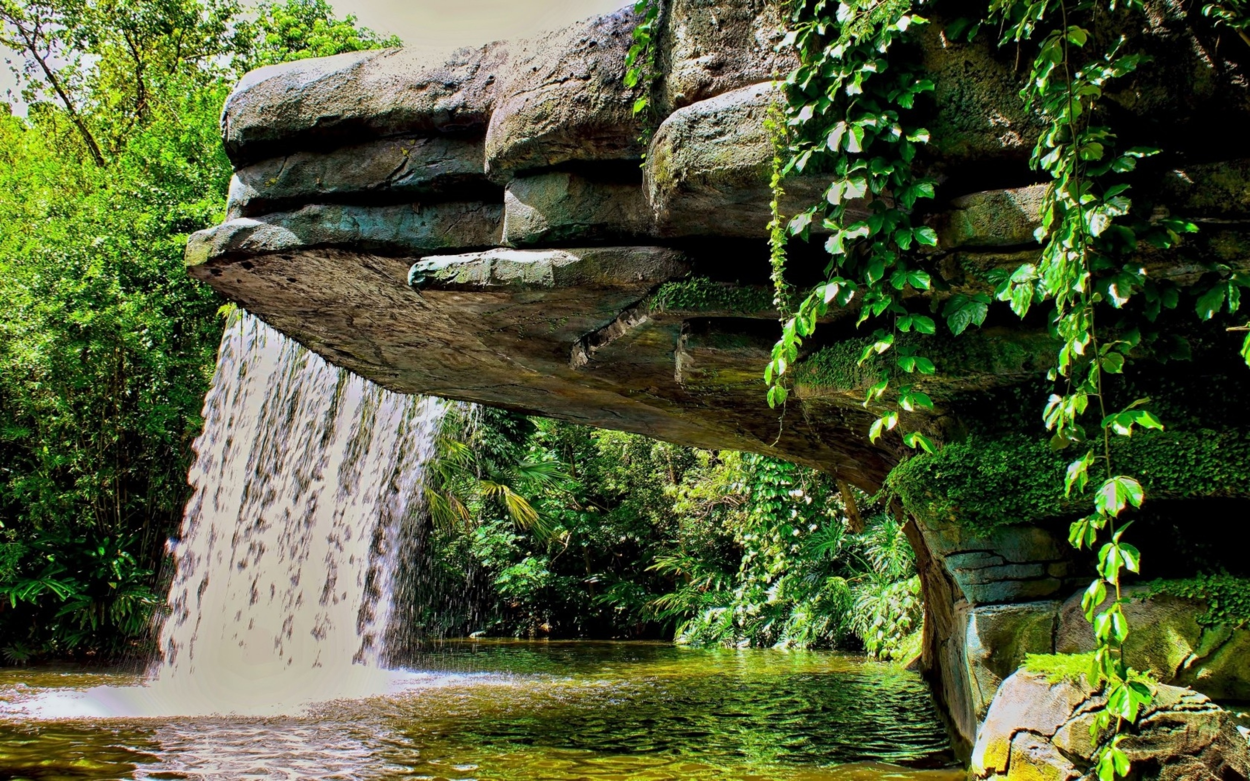водопад озеро листья растения камни без смс