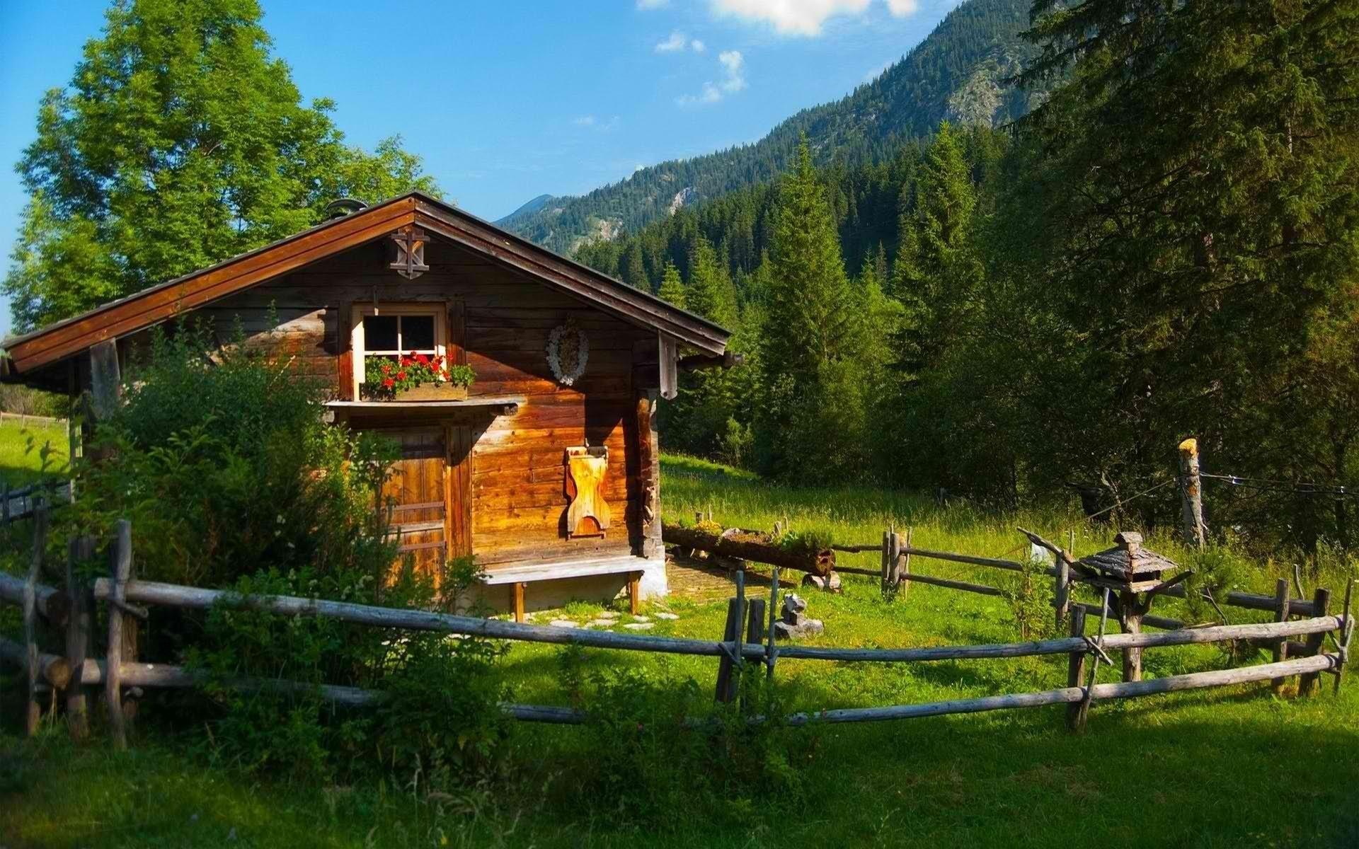 природа отдых дом деревья  № 254029 бесплатно