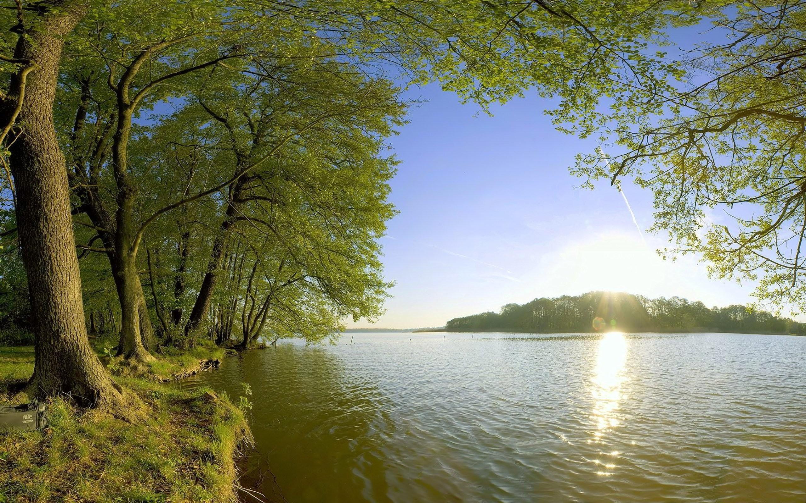 природа река солнце деревья  № 198608 без смс
