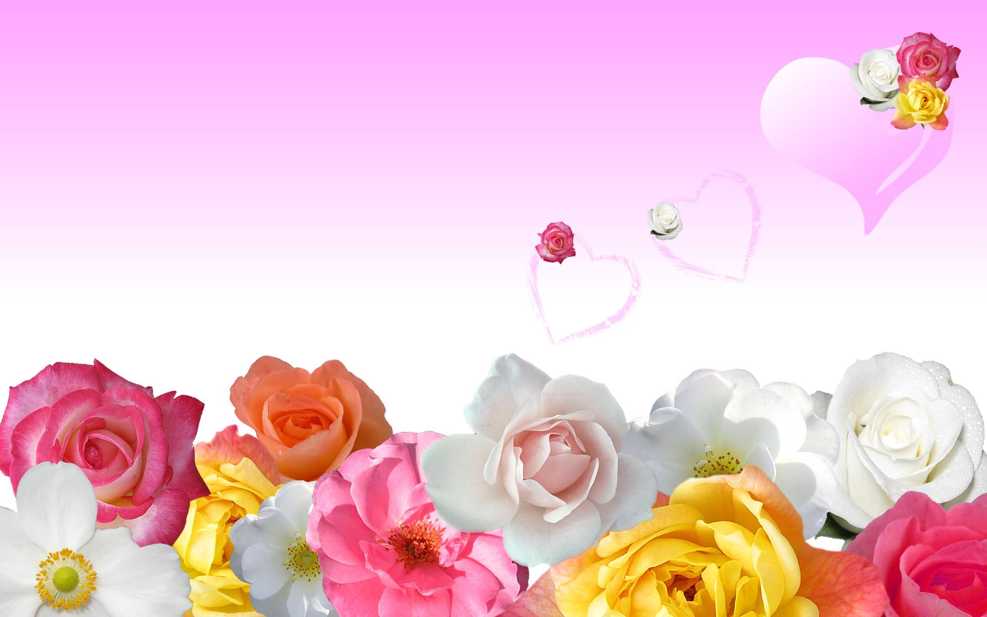 Слайд открытки цветы