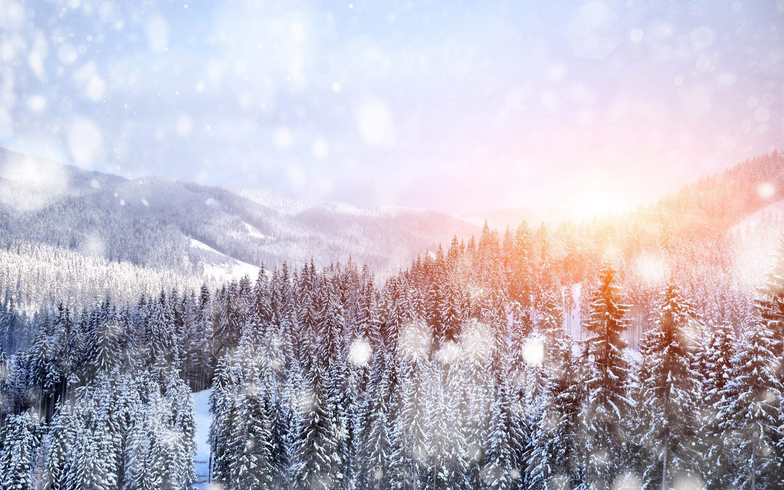 природа снег зима деревья горы  № 2577071 загрузить
