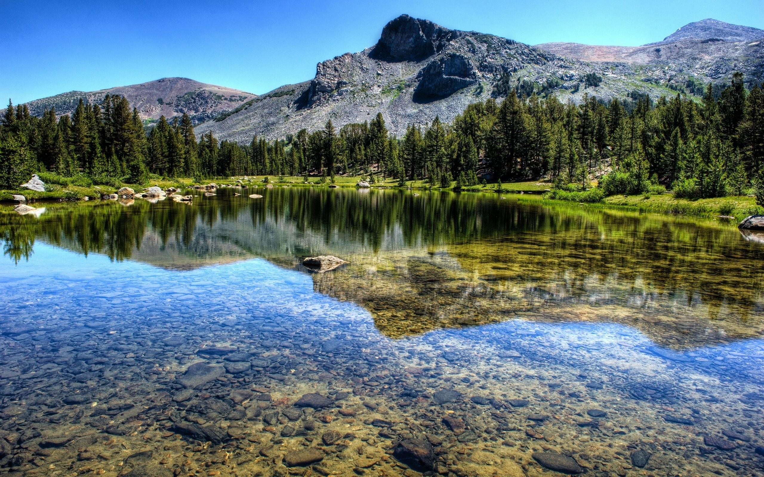 горы отражение озеро лес бесплатно