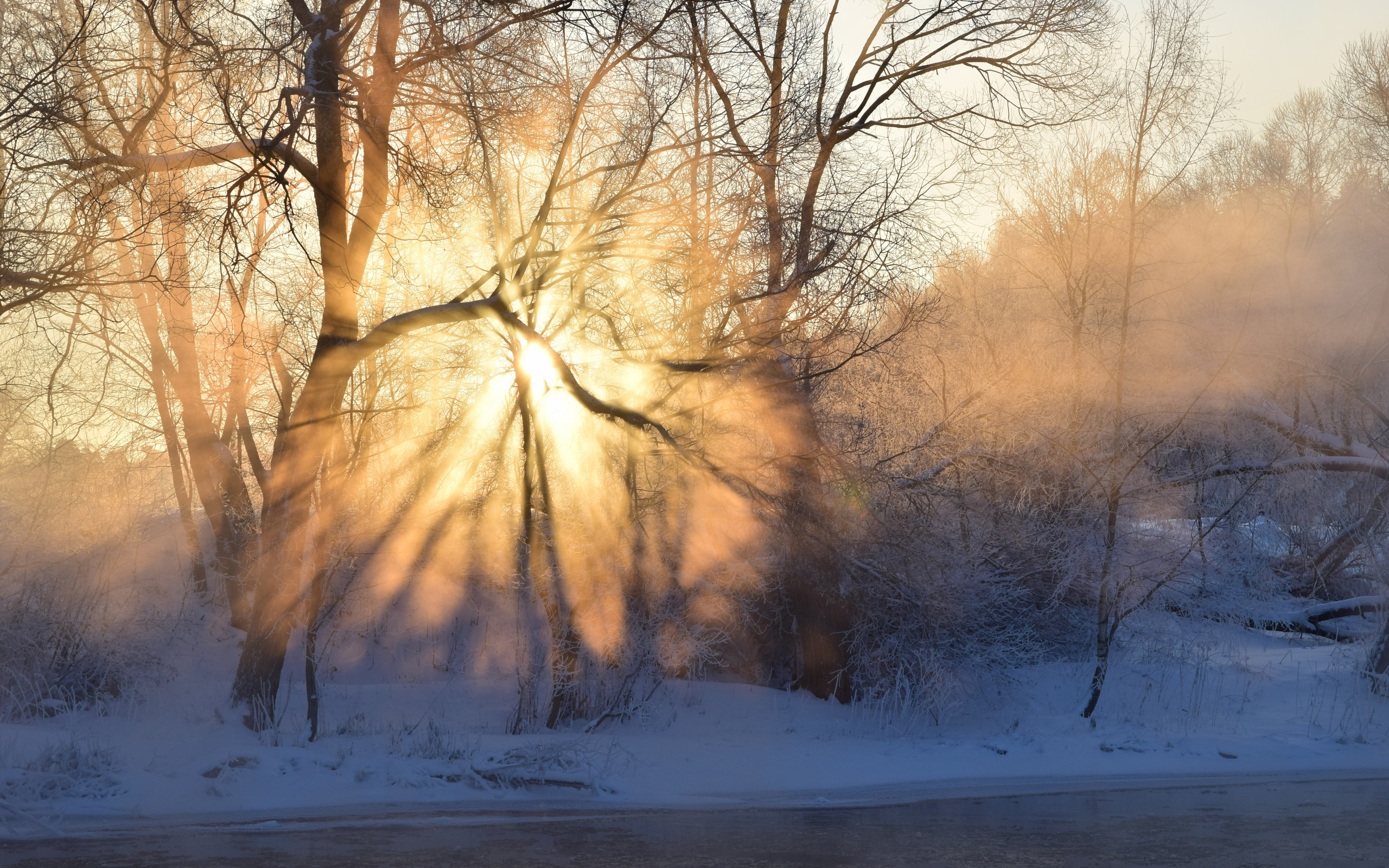 Морозное утро загрузить
