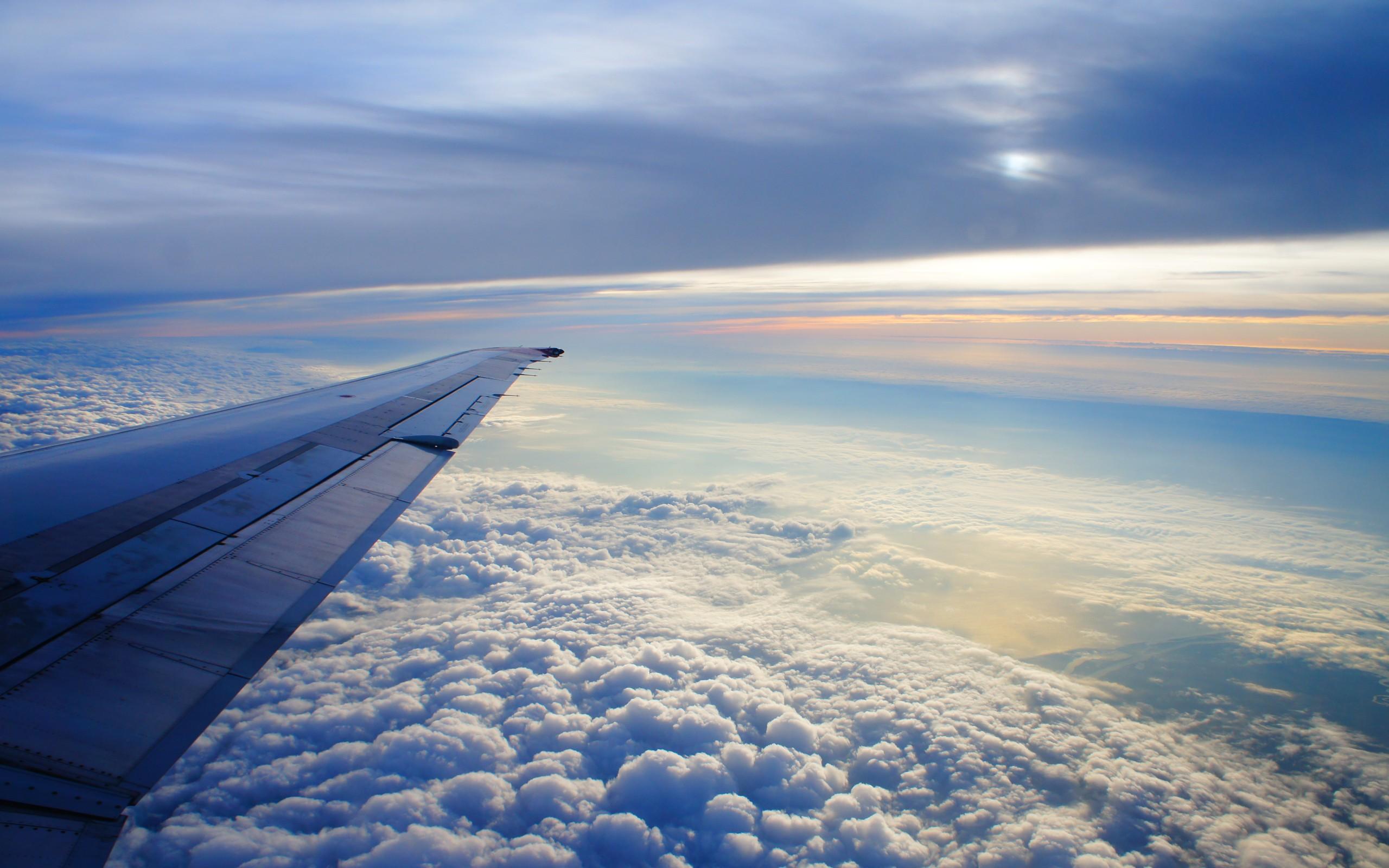 Полет над поли бесплатно