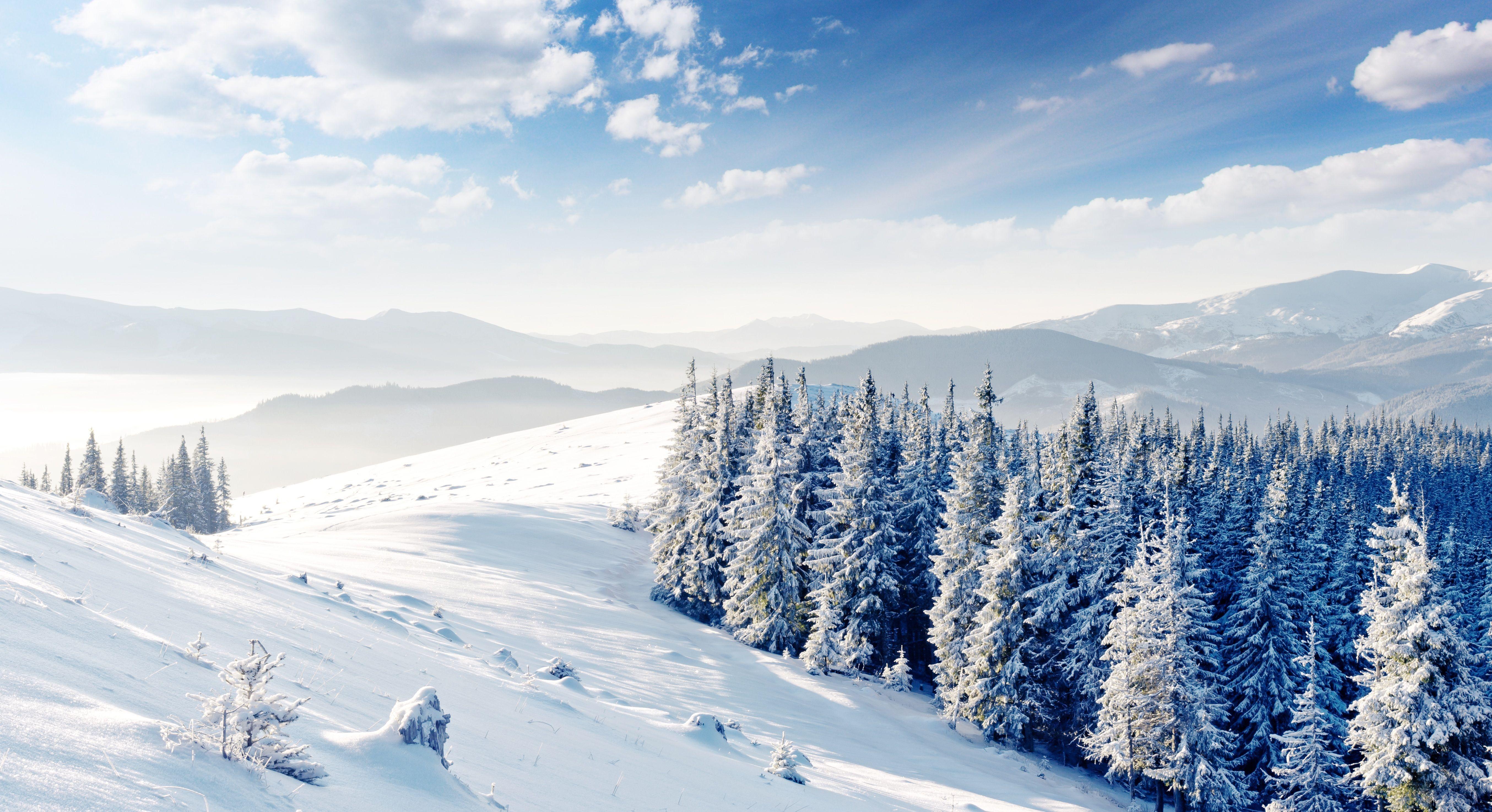 природа зима снег горы скалы деревья  № 2781177 бесплатно