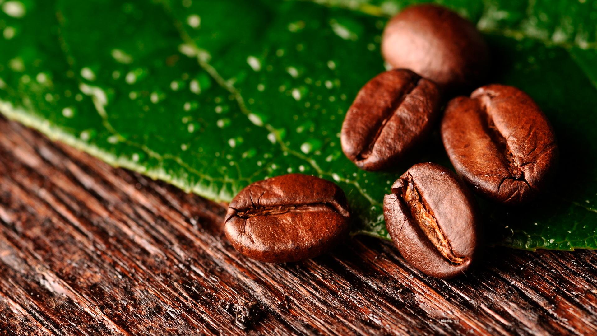 Кофейные зерна с листьями скачать
