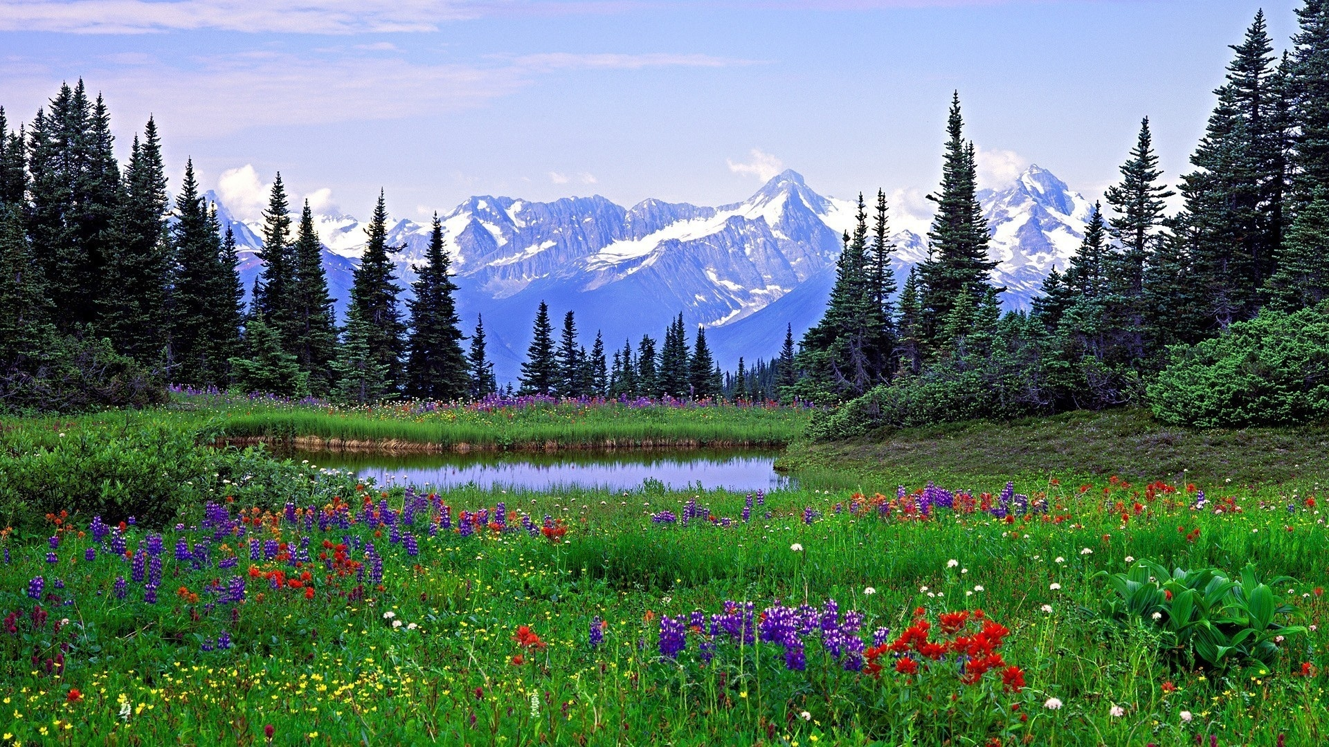 природа горы весна луг скалы скачать