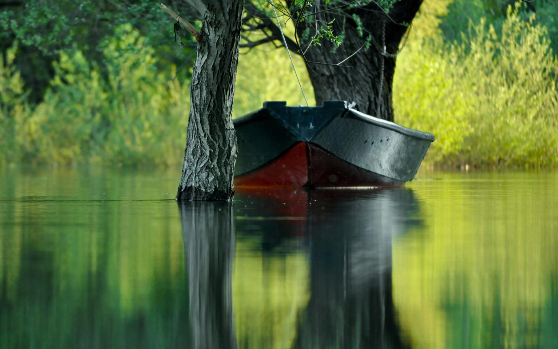 картинки на рабочий стол река лодка пользовалась только мокрыми