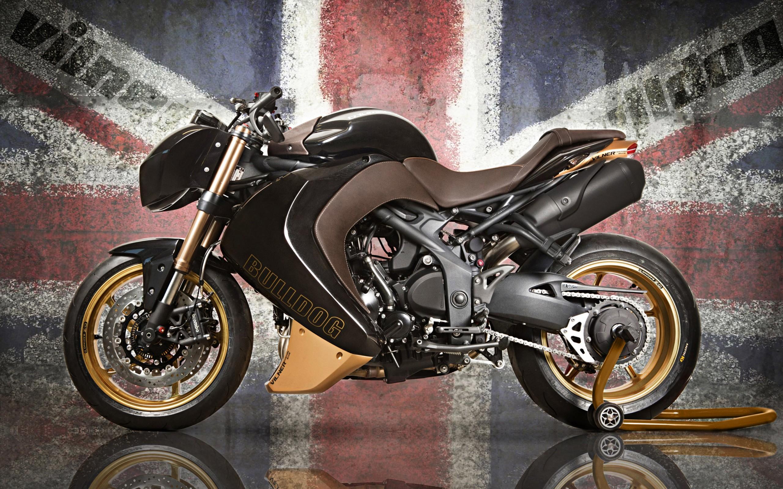 мотоциклы желтый triumph speed triple скачать