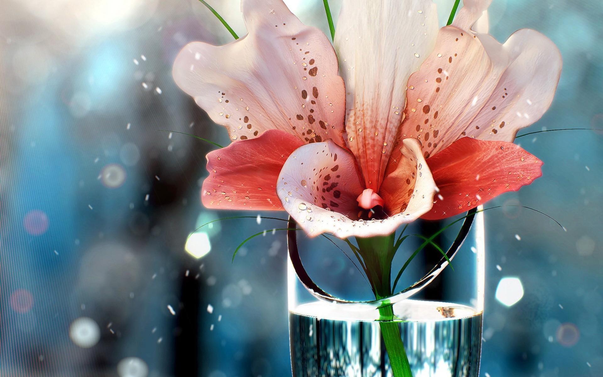 цветы ваза блики без смс