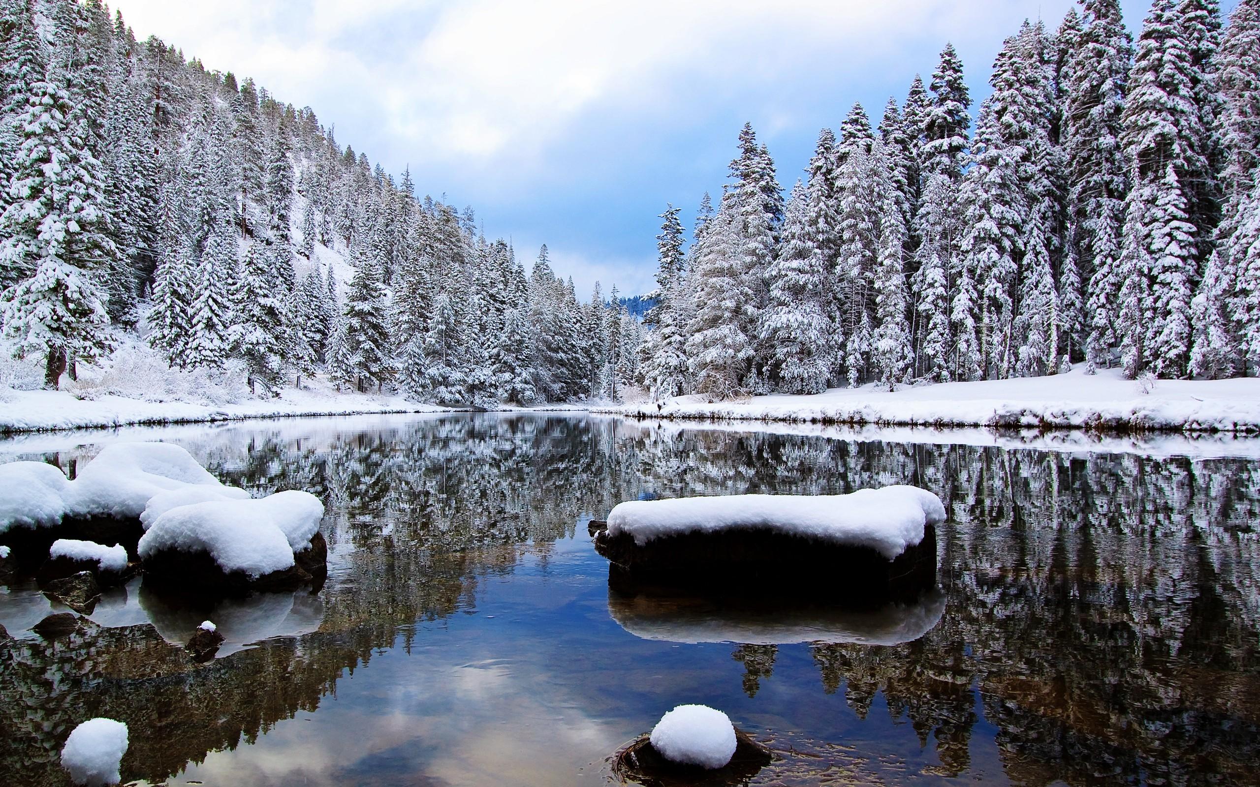 природа река отражение зима снег деревья лес загрузить