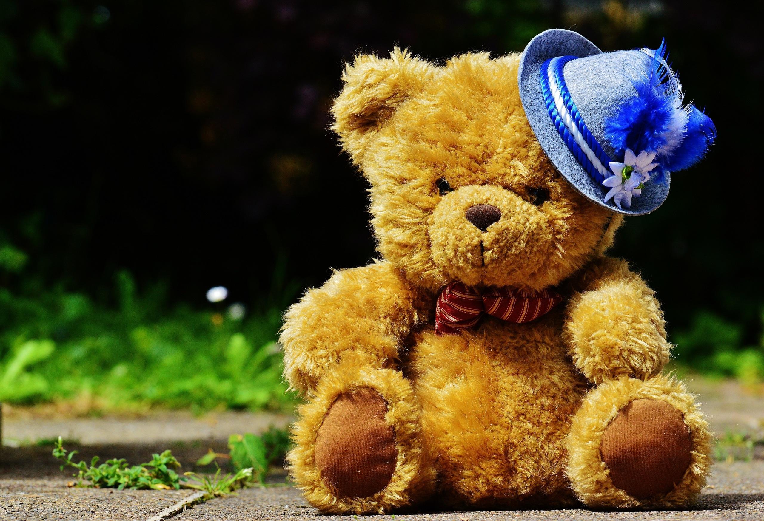 Плюшевый медведь открытка