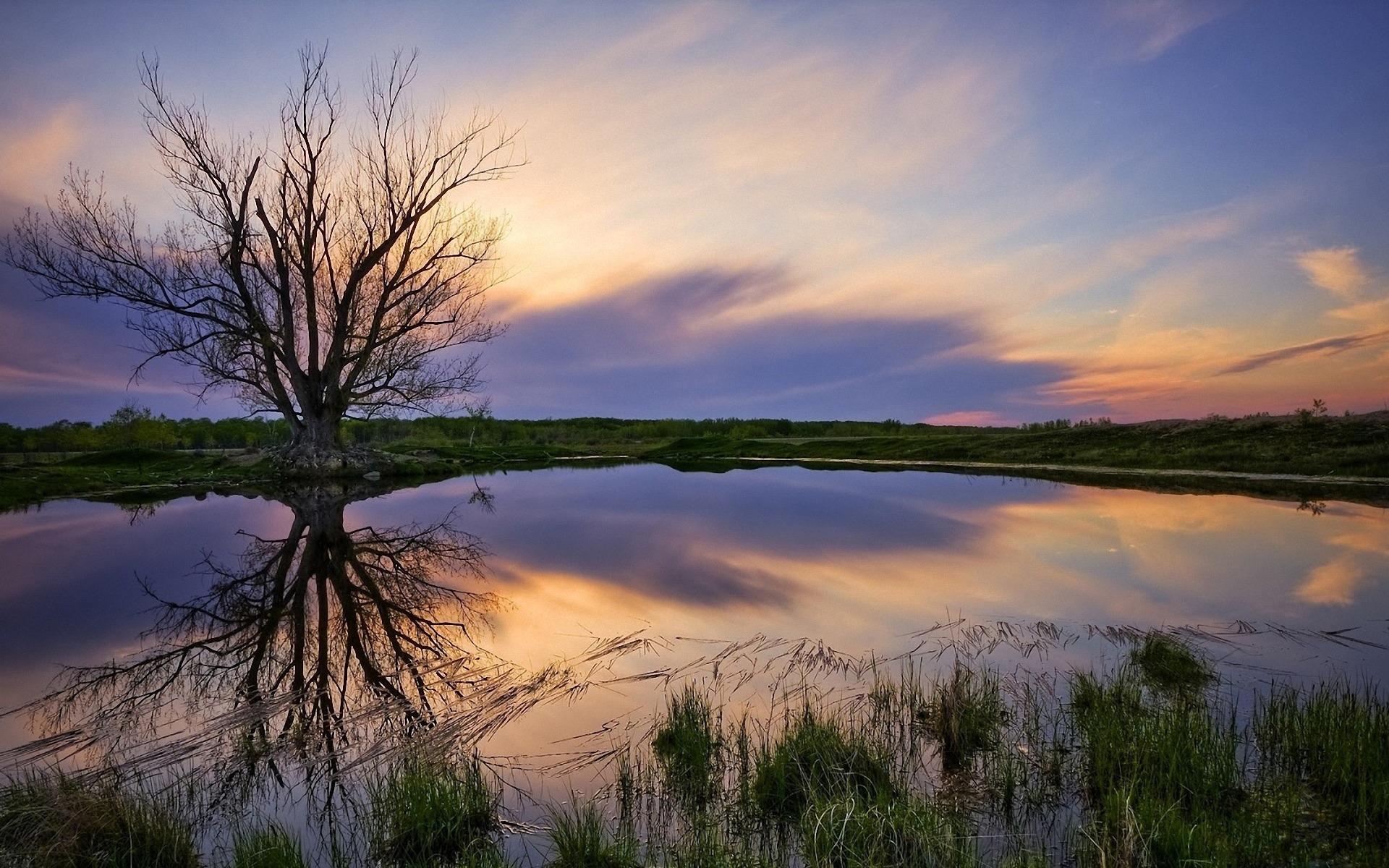 закат озеро осень трава  № 1020771 бесплатно