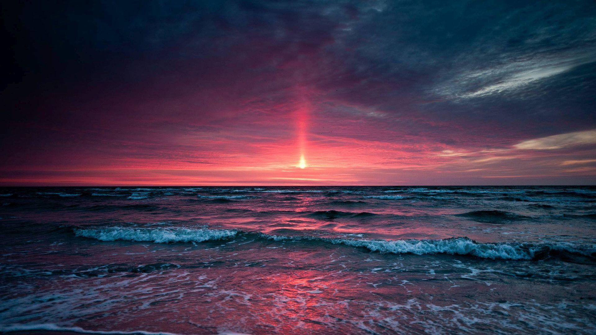 Красивые картинки с морем и закатом, пушистые котики
