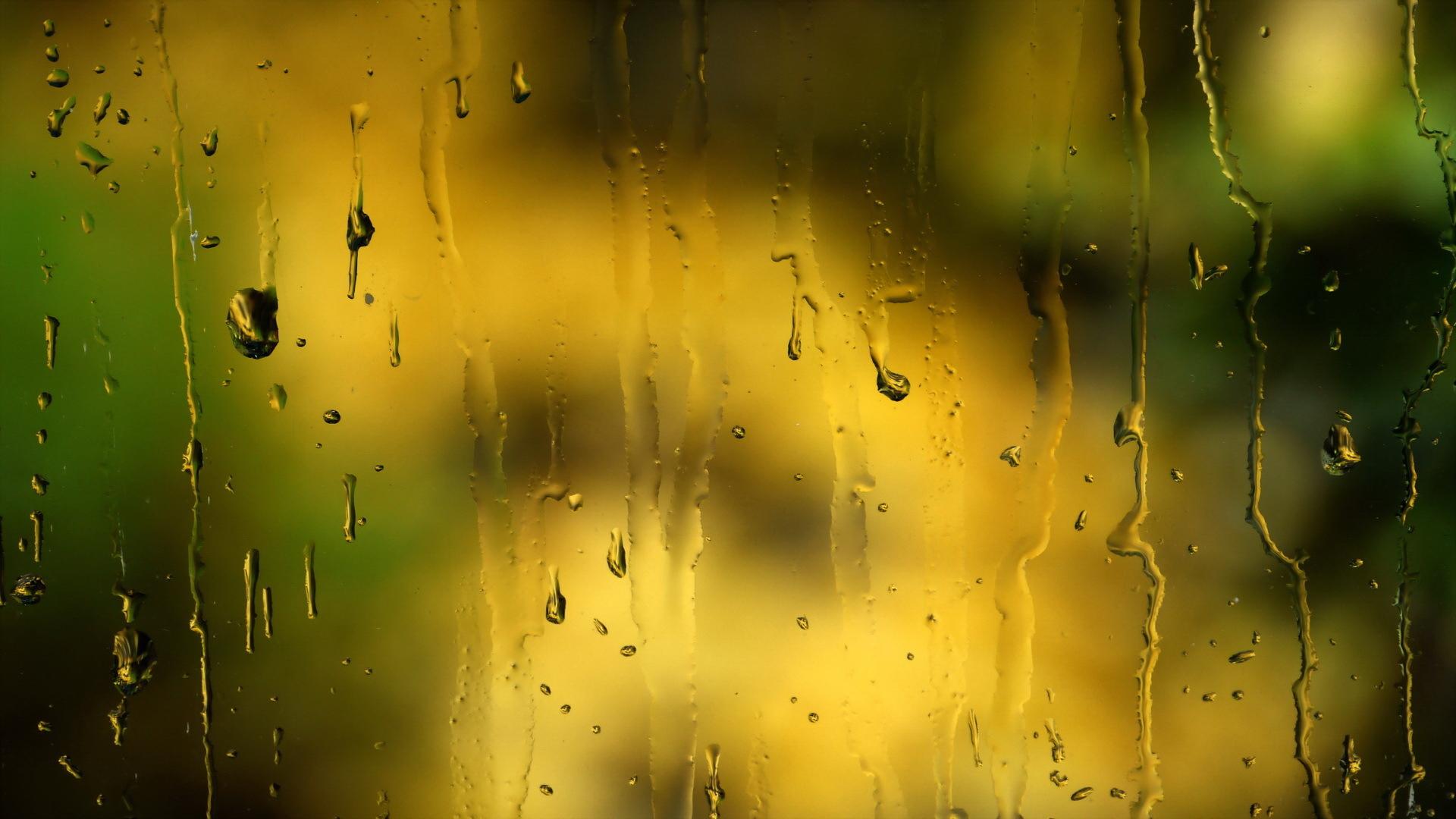 Картинки на рабочий стол анимация дождь, букет цветов