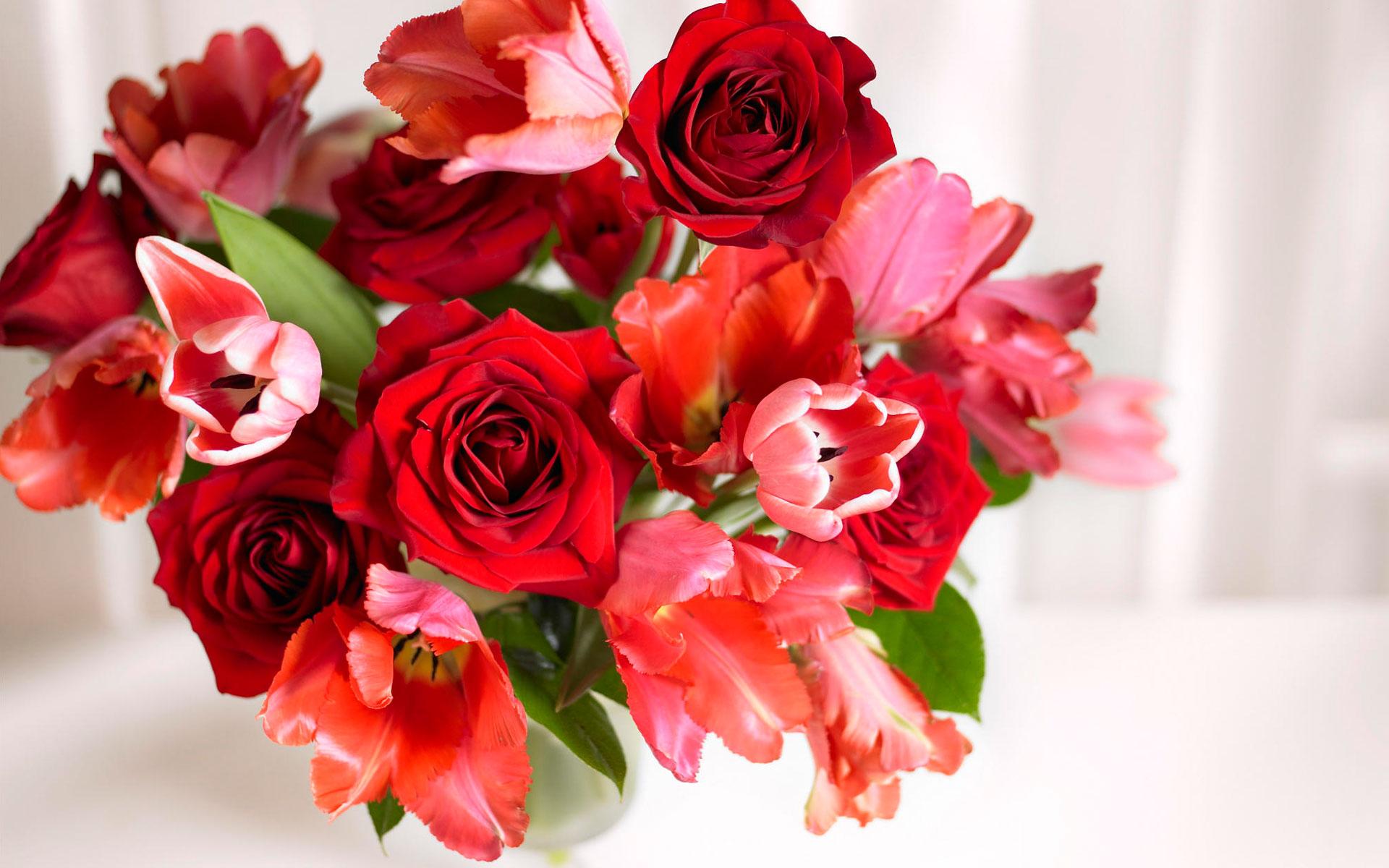Картинки с цветами розы и тюльпаны