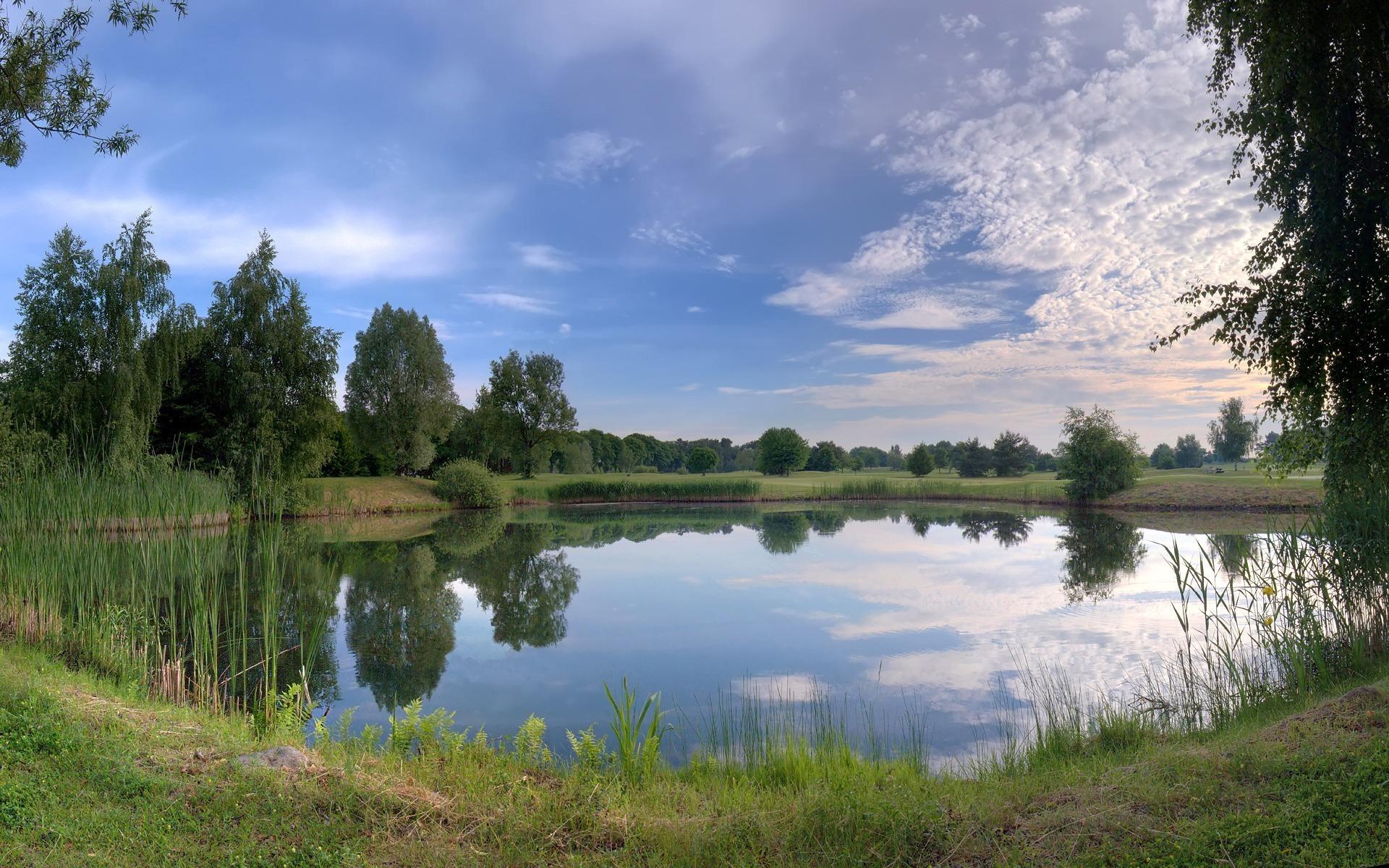Берег озера в траве  № 2482704 бесплатно