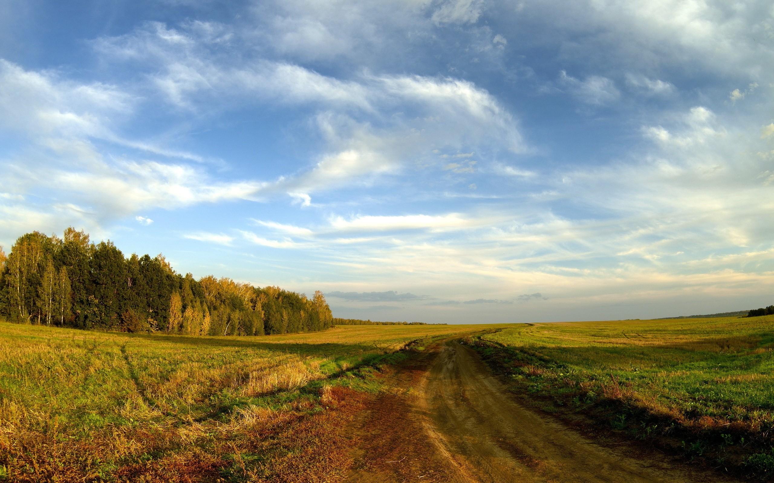 дорога осенний лес небо скачать