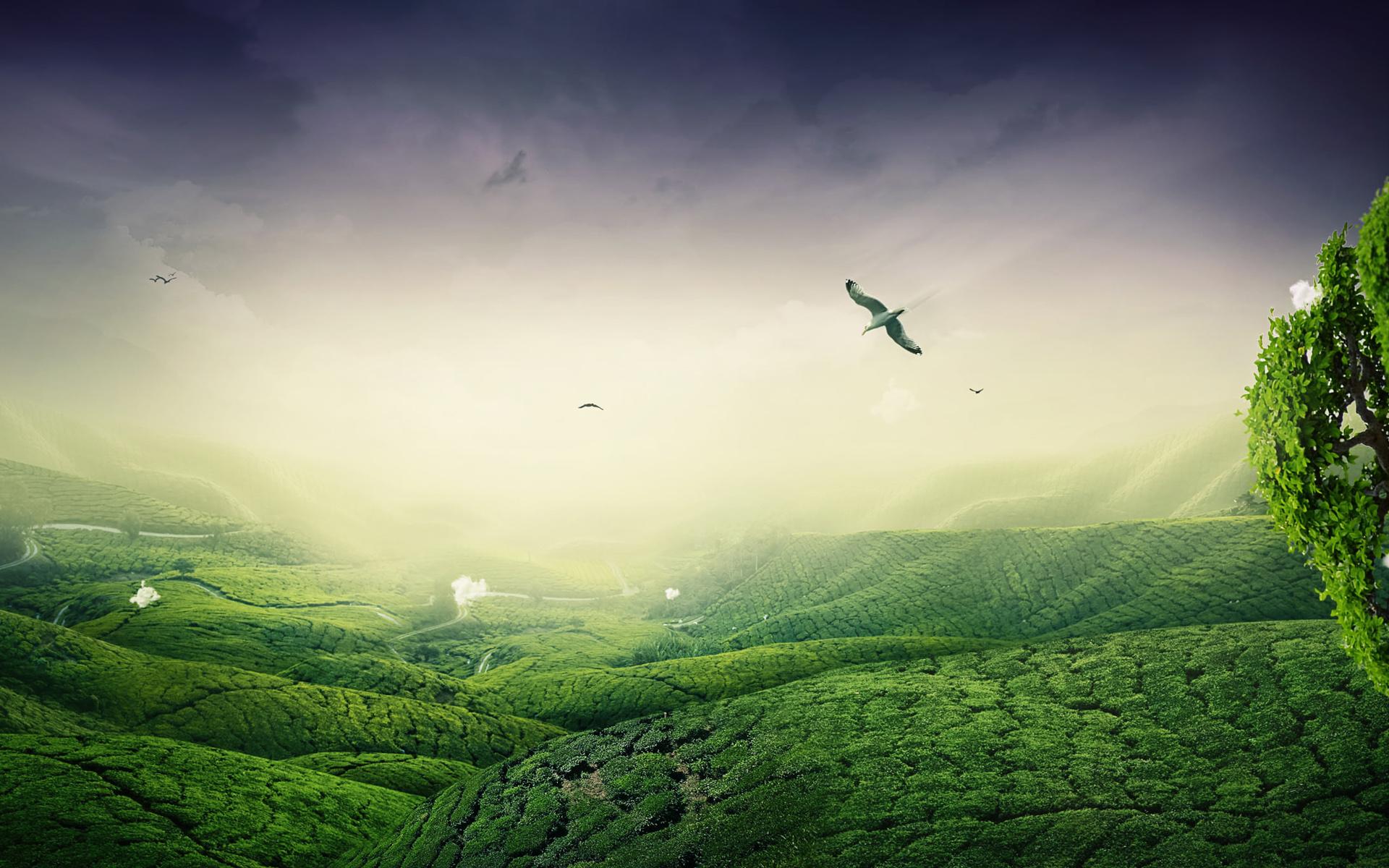 Зеленая долина без смс