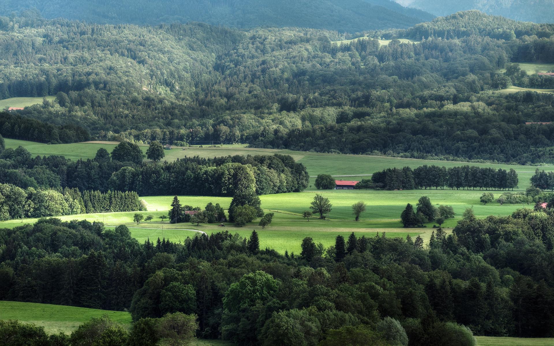 Зеленая долина загрузить
