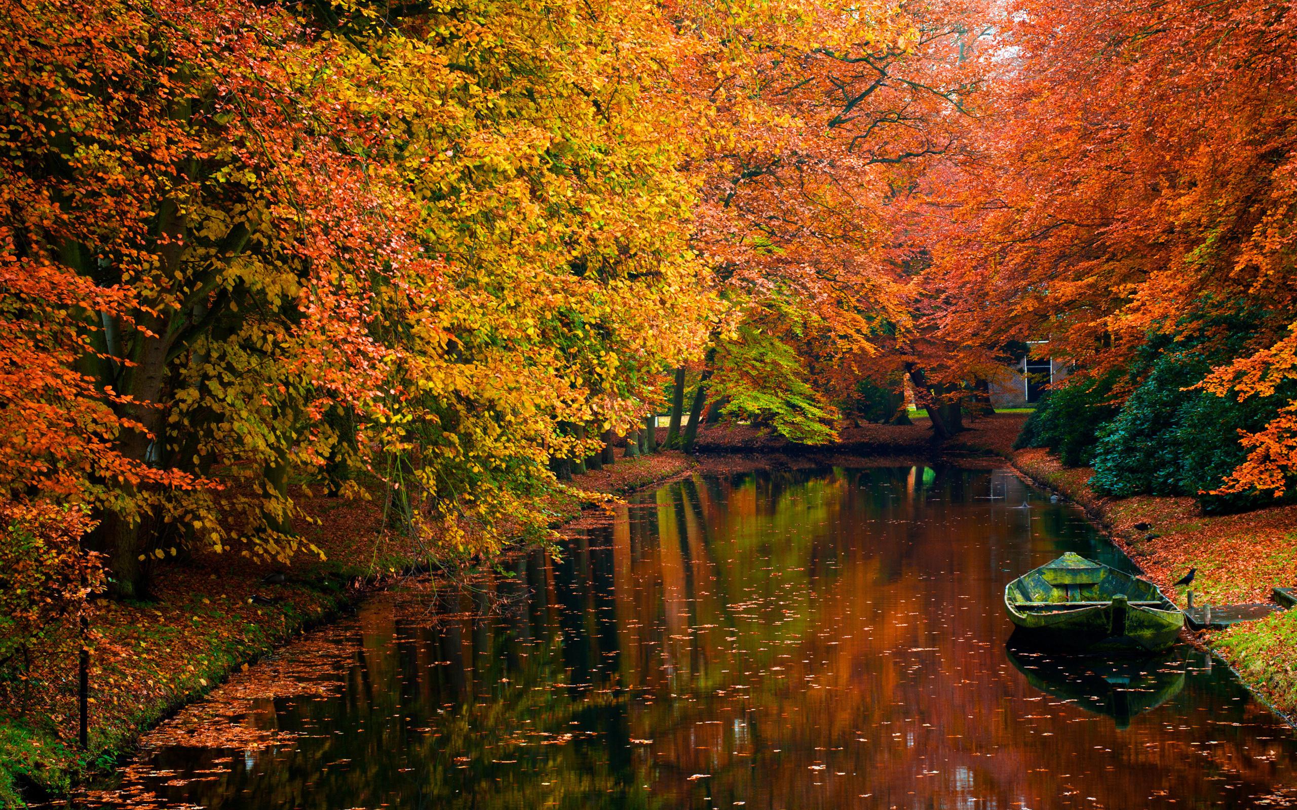 Красивая осень картинки на рабочий стол
