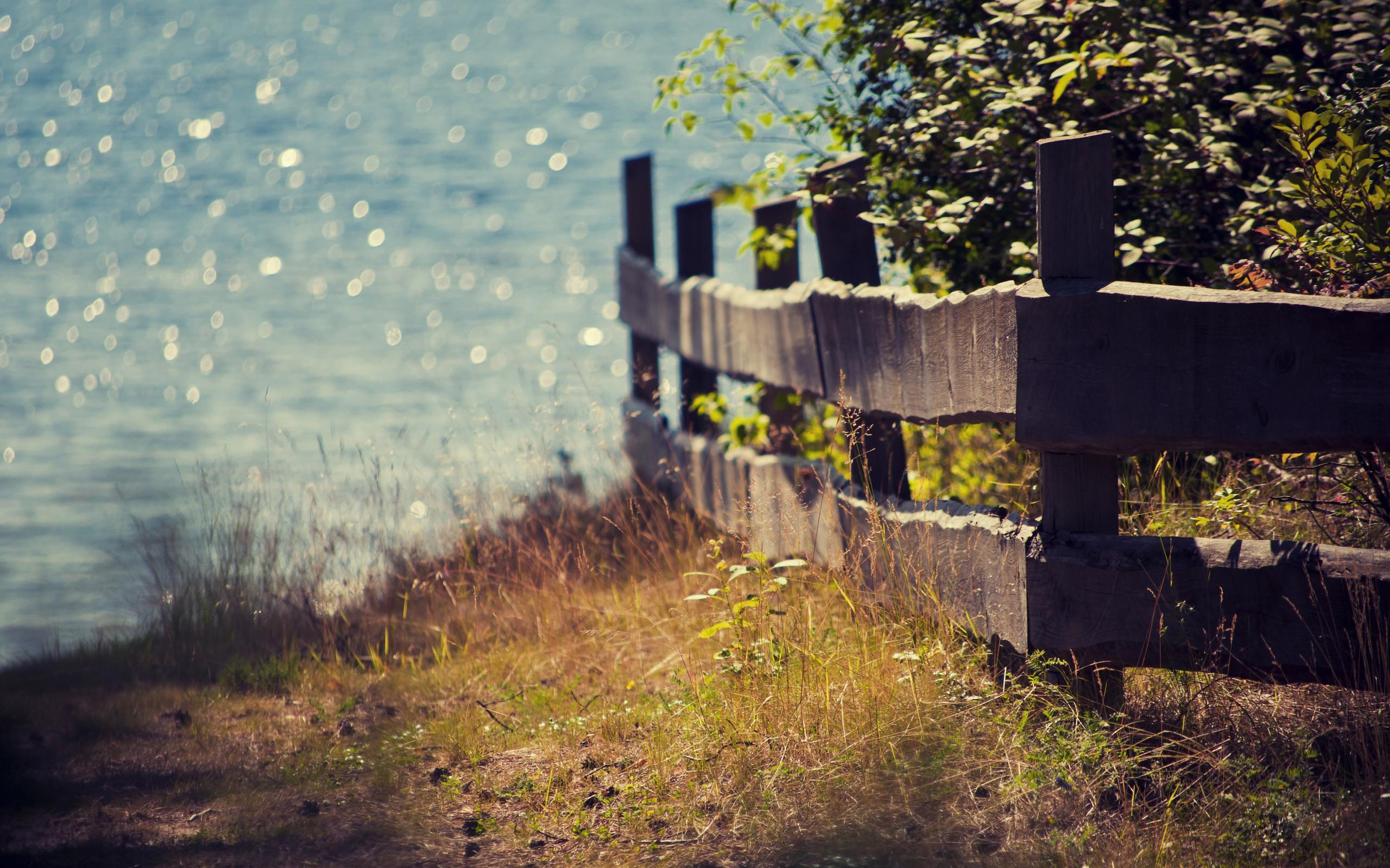забор природа скачать
